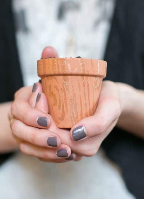 How To Decorate Mini Planters With Nail Polish