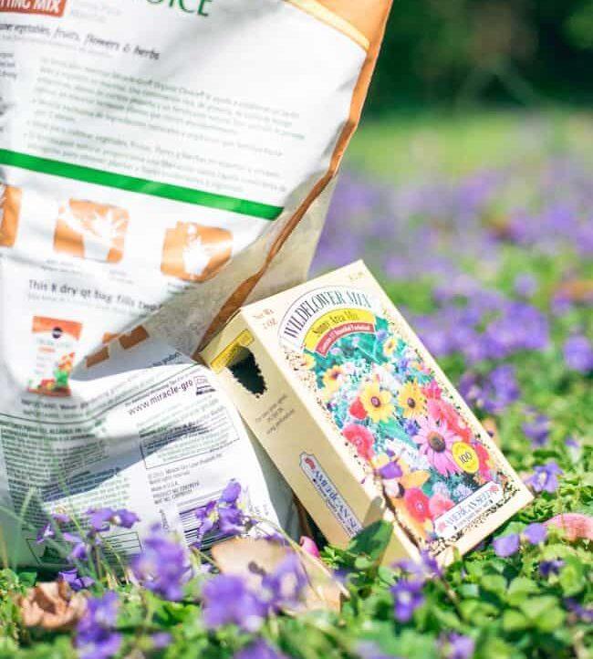 DIY Wildflower Seed Bombs - Hello Nest