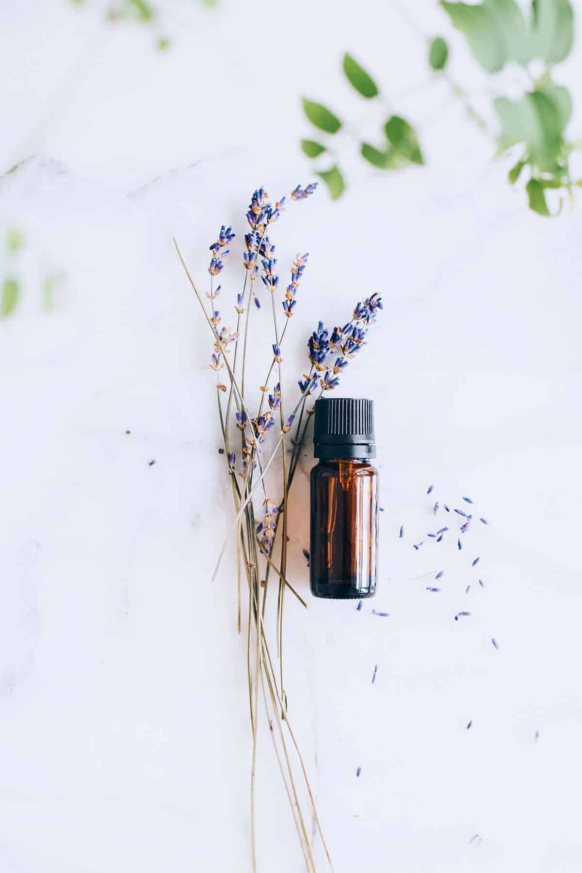 6 Ways To Use Lavender Oil In Green Cleaning Recipes Hello Nest