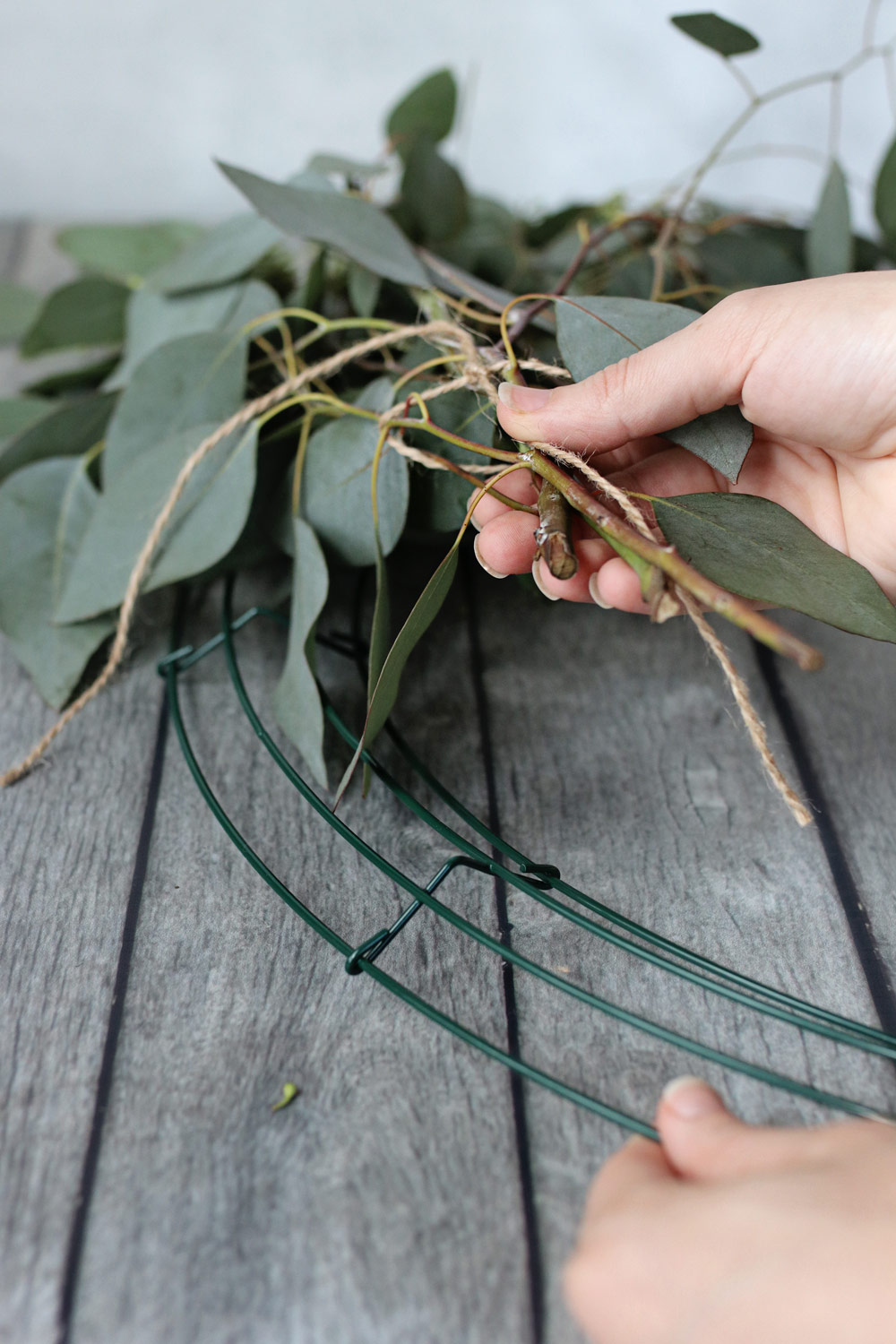 How to Make a Wreath with Fresh Eucalyptus