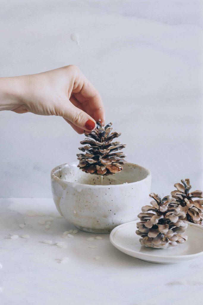 Wax dipped pinecone firestarters