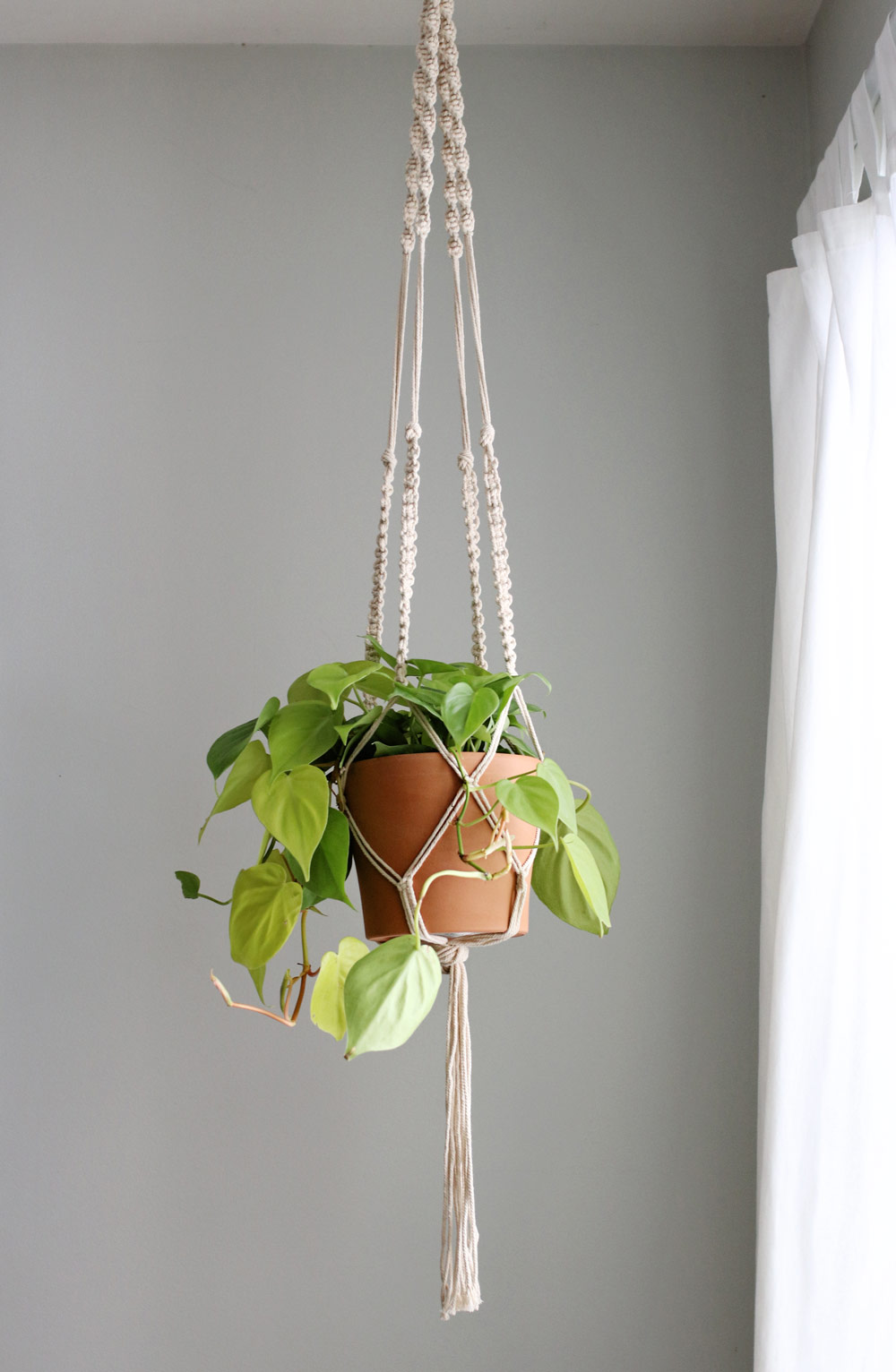 Diy Macrame Plant Hanger Hello Nest