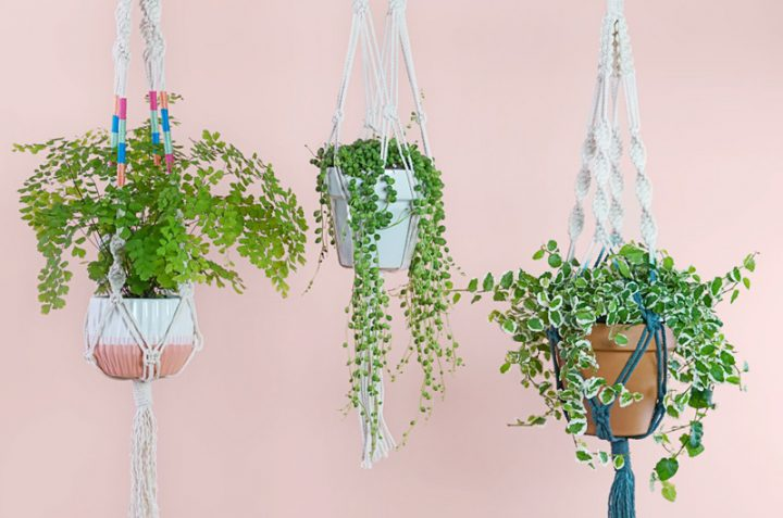 How to Make a Macramé Plant Hanger from FTD | 8 Modern DIY Macrame Projects