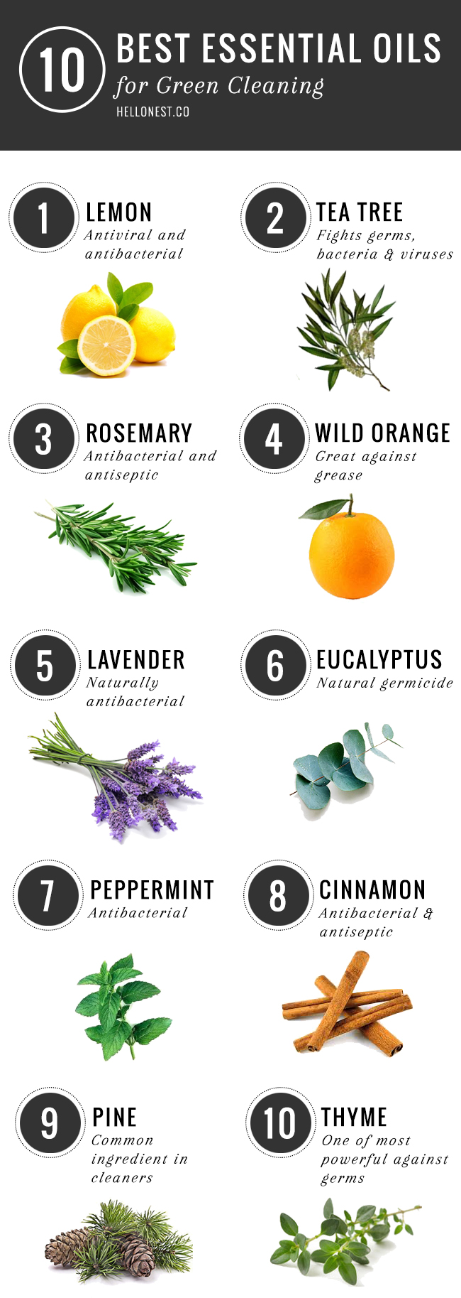 10 Best Essential Oil for Green Cleaning