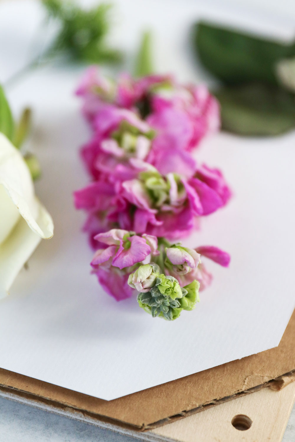 How To Press Flowers + Make a DIY Flower Press