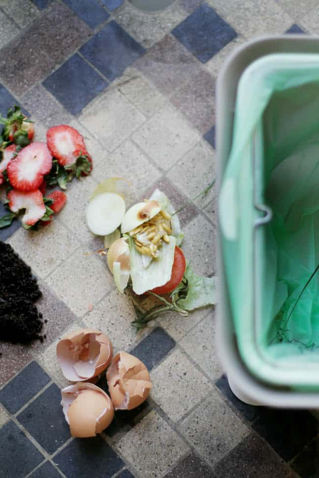 Indoor composting basics