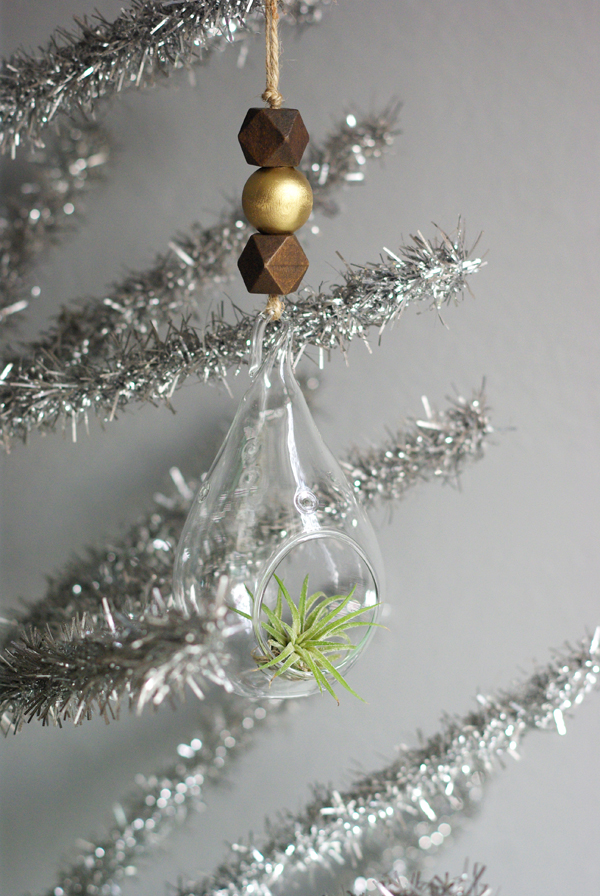 Air Plant Christmas Ornaments from Oleander and Palm