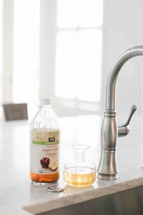 Apple Cider Vinegar Fruit Fly Trap