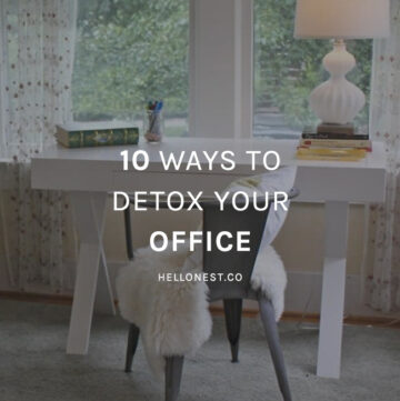 10 Ways to Detox Your Office - HelloNest.co