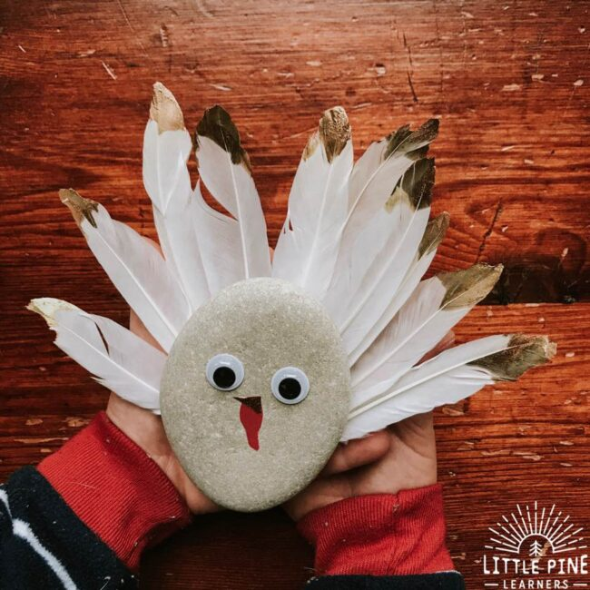 Turkey Rock Craft from Little Pine Learners